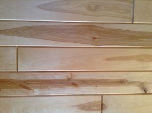 White Birch Paneling